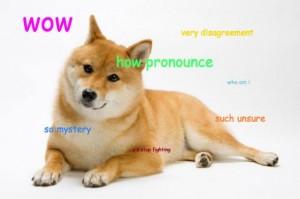 pronounce_doge4.jpg.CROP.promovar-mediumlarge