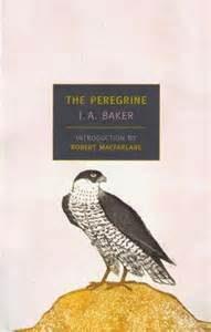 peregrine book